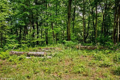 Lakeside Residential Lots & Land For Sale: 6 Acorn Path #6
