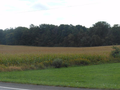 Berrien County Residential Lots & Land For Sale: 5275 Love Road