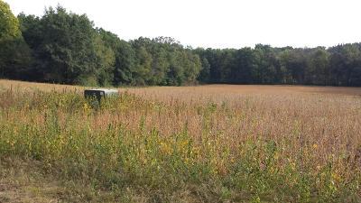 Middleville Residential Lots & Land For Sale: Parcel A Zoet Drive