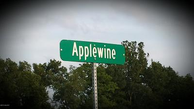 Middleville Residential Lots & Land For Sale: Lot # 4 Applewine Road