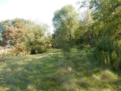 Holland, West Olive Residential Lots & Land For Sale: 2502 N 120th Avenue