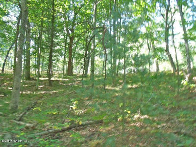 Benzie County Residential Lots & Land For Sale: Cinder Road #2