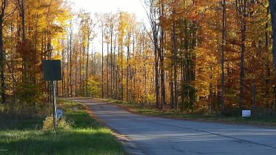 Big Rapids Residential Lots & Land For Sale: The Hills Of Mitchell Creek