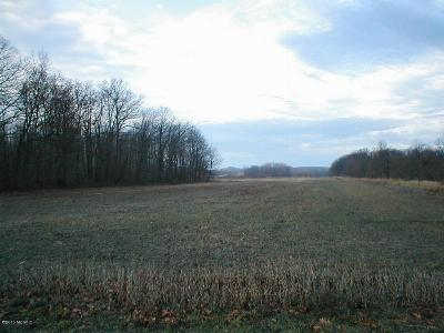 Berrien County Residential Lots & Land For Sale: California Road