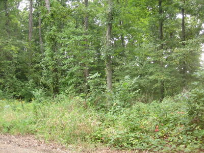 Hillsdale County Residential Lots & Land For Sale: 6351 Oak Ridge Drive