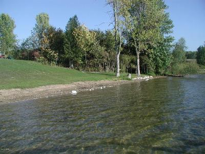 Scottville Residential Lots & Land For Sale: 1331 Water Edge