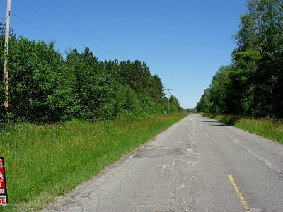 Manistee County Residential Lots & Land For Sale: V/L 9 Mile Road