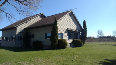 Mecosta County Single Family Home For Sale: 3616 Arthur Road
