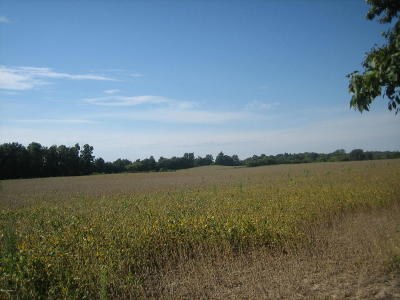 Branch County, Hillsdale County Residential Lots & Land For Sale: 00 North Adams Road