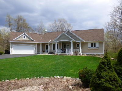 South Haven Single Family Home For Sale: 7161 Cottage Lane