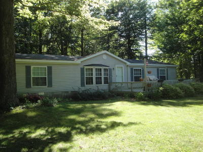 Mears Single Family Home For Sale: 573 N 28th Avenue