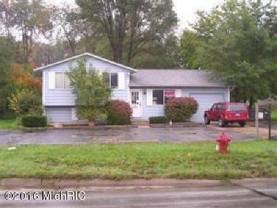 Berrien County Commercial For Sale: 2307 S 11th