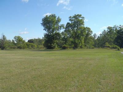 Hillsdale County Residential Lots & Land For Sale: 3003 W Carleton Road
