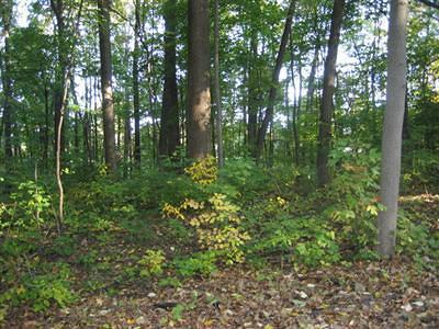 Berrien County Residential Lots & Land For Sale: Groenke