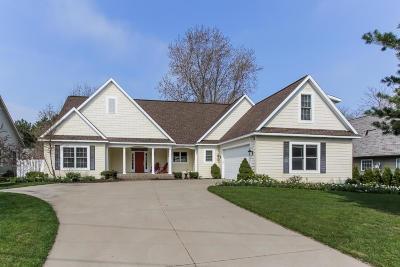Saugatuck Single Family Home For Sale: 3465 Palmer Drive