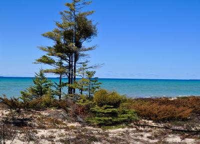 Charlevoix County Residential Lots & Land For Sale: 35259 Bonners Landing Road