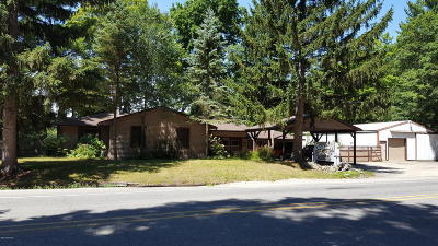 Newaygo County Single Family Home For Sale: 5797 S Croton Hardy Drive