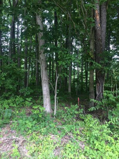Berrien Springs, Buchanan, Niles, St. Joseph Residential Lots & Land For Sale: Red Bud Trail N
