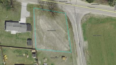 Sodus Residential Lots & Land For Sale: Pipestone