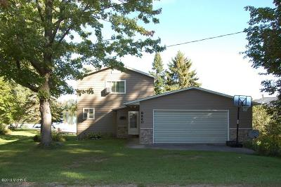Mecosta County Single Family Home For Sale: 8660 Lynwood Lane