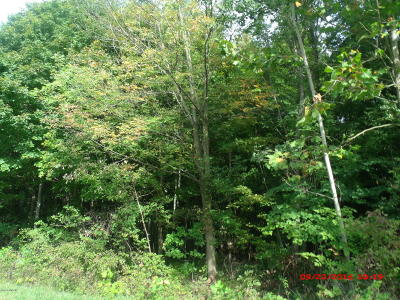 Hartford Residential Lots & Land For Sale: 6750th