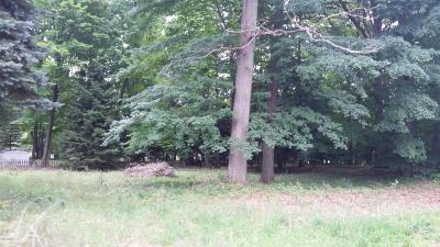 Ludington Residential Lots & Land For Sale: 6990 W Dewey