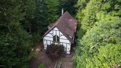 New Buffalo Single Family Home For Sale: 19464 Dogwood Drive