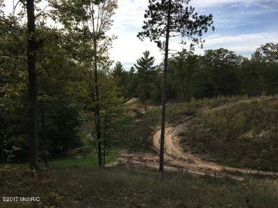 Manistee County Residential Lots & Land For Sale: Off M22 - Indigo Trail #A & B