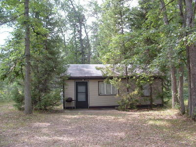 Manistee County Single Family Home For Sale: 339 S Baker Road