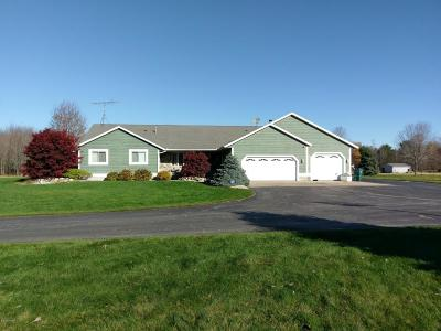 Muskegon Single Family Home For Sale: 4826 Putnam Road