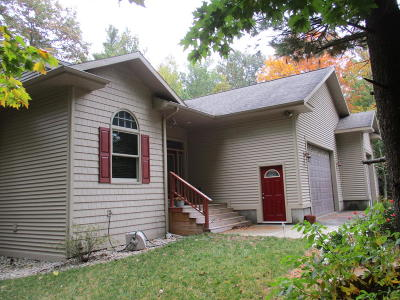 Ludington Single Family Home For Sale: 1824 N Jebavy Drive
