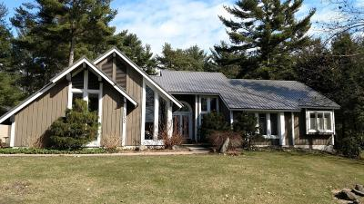 Grand Haven Single Family Home For Sale: 11700 Garnsey Avenue