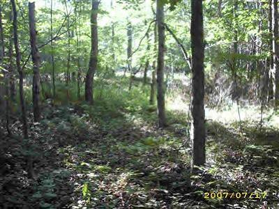 Ludington Residential Lots & Land For Sale: 5960 W Jagger Road #Lot 1