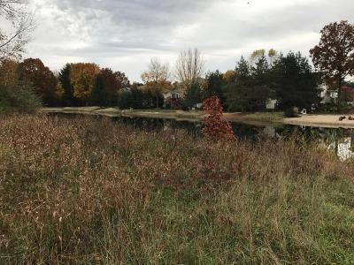 Holland, West Olive Residential Lots & Land For Sale: Lot A Perry Street