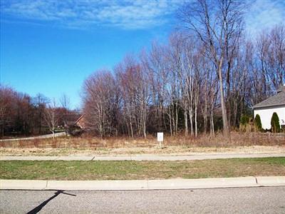 Stevensville Residential Lots & Land For Sale: 5490 Fairview Street