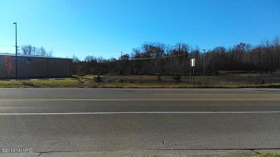 Mecosta Commercial For Sale: 00000 W 11 Mile Rd. (M-20)