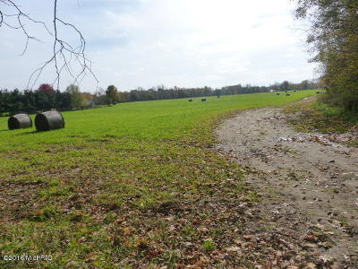 Dowagiac Residential Lots & Land For Sale: 30220 Allen