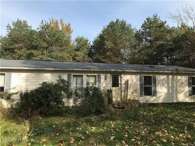 Newaygo County Single Family Home For Sale: 6317 E 76th Street