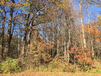 Lakeside Residential Lots & Land For Sale: Red Arrow Highway