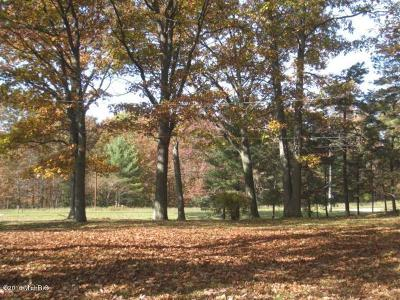 Ludington Residential Lots & Land For Sale: 568 N Jebavy Drive