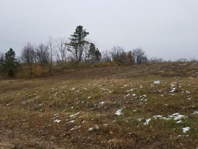 Hillsdale County Residential Lots & Land For Sale: 10561 Plaza Court