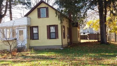 Niles Single Family Home For Sale: 302 S 4th