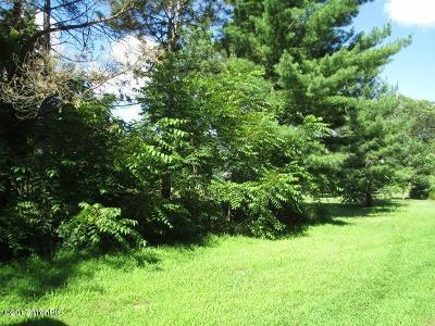 Paw Paw Residential Lots & Land For Sale: 48031 Cr 653