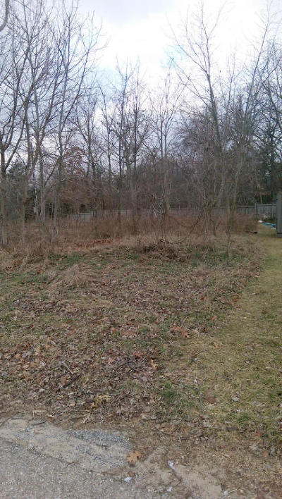 Berrien County Residential Lots & Land For Sale: 1430 W Water Street