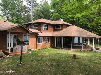 Mecosta County Single Family Home For Sale: 10860 W Blue Lake Drive