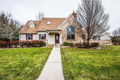 St. Joseph Single Family Home For Sale: 4799 Luther Path