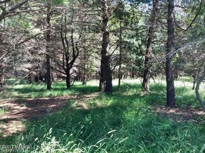 Manistee County Residential Lots & Land For Sale: Ramsdell Road