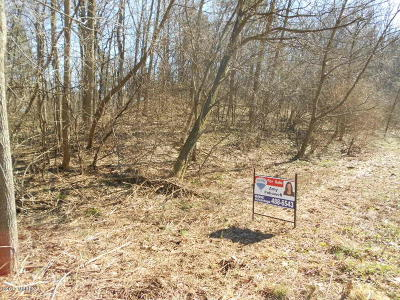 Berrien County, Branch County, Calhoun County, Cass County, Hillsdale County, Jackson County, Kalamazoo County, St. Joseph County, Van Buren County Residential Lots & Land For Sale: Solon St #ending 0