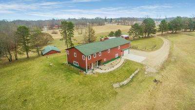 Cass County Single Family Home For Sale: 64990 Dailey