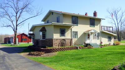 Dowagiac Single Family Home For Sale: 29654 Beeson Street